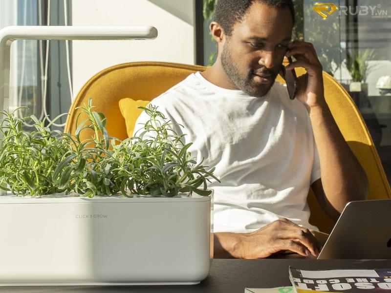 Máy trồng cây thông minh Click & Grow