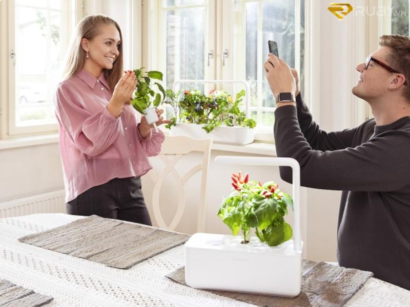 Bộ công cụ trồng rau sạch mới