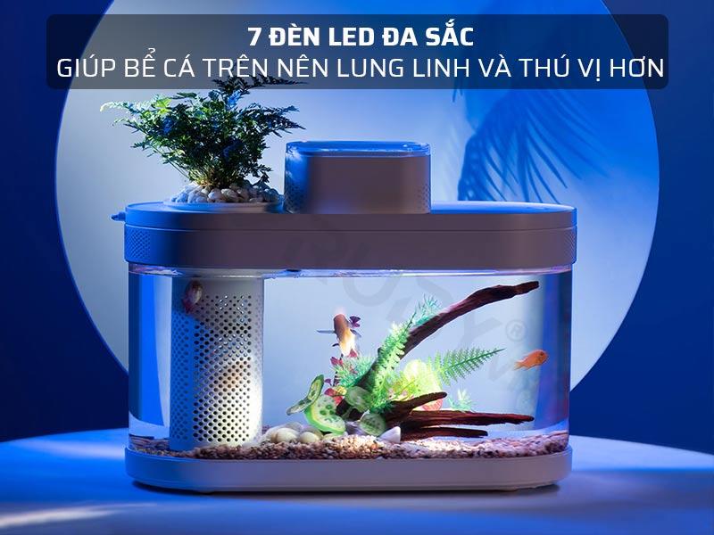 7 đèn LED đa sắc
