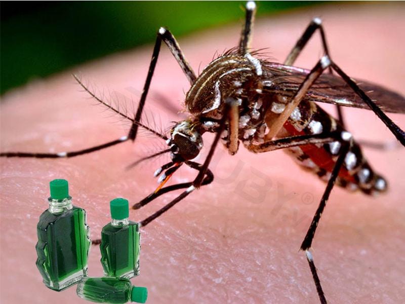 Cách đuổi muỗi bằng dầu gió tại nhà hiệu quả