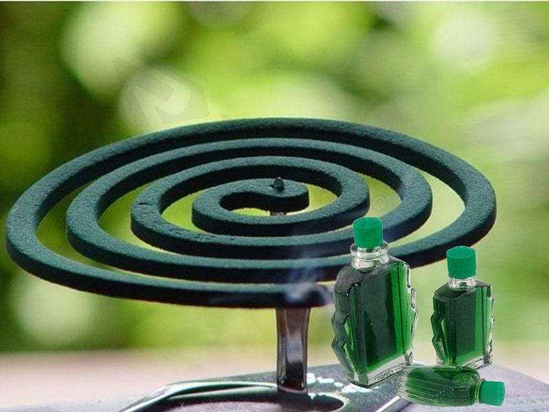 Nhỏ dầu gió lên nhang muỗi