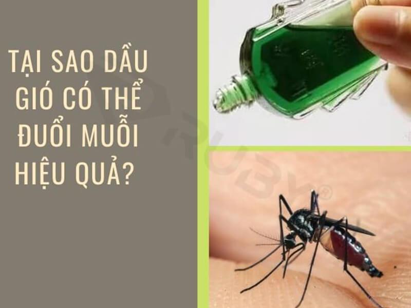 Tại sao dầu gió có thể đuổi muỗi hiệu quả?