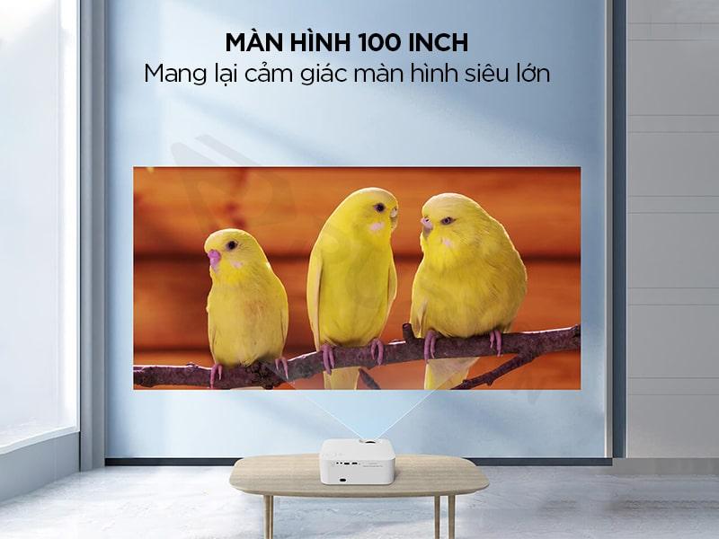 Màn hình 100 inch